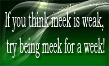 meek-for-a-week